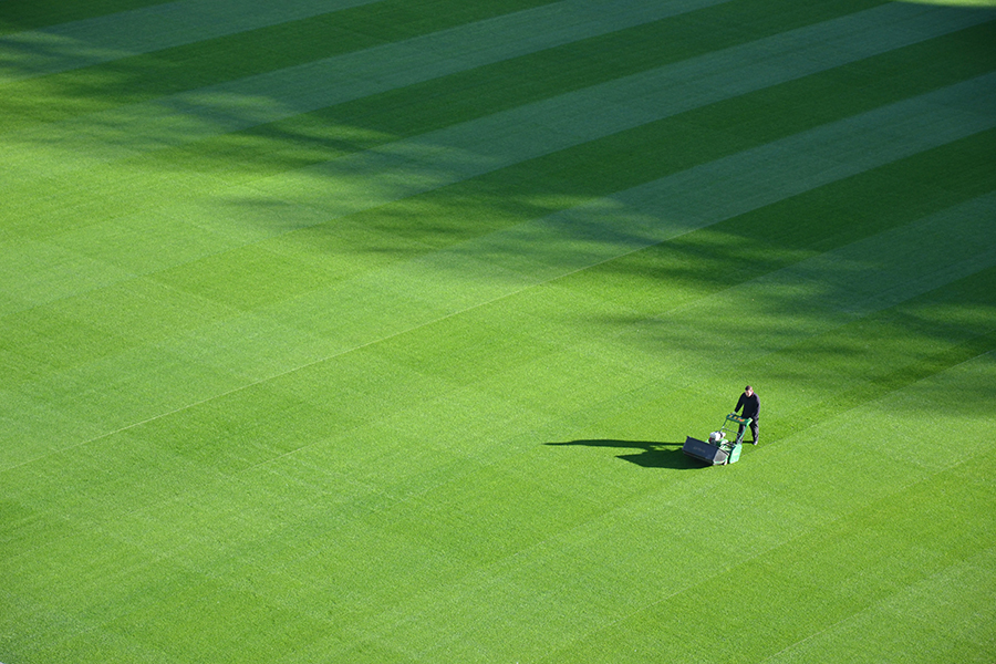How to keep lawns from dying over the winter months